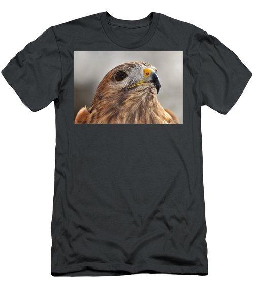 Rescued Hawk Men's T-Shirt (Athletic Fit)