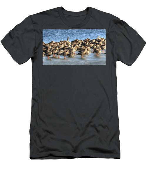 Resting On Iowa Ice Men's T-Shirt (Athletic Fit)