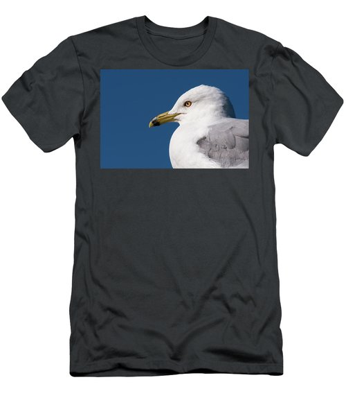 Men's T-Shirt (Athletic Fit) featuring the photograph Ring-billed Gull Portrait by Onyonet  Photo Studios
