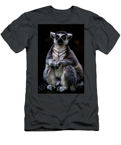Men's T-Shirt (Slim Fit) featuring the photograph Ring Tailed Lemur by Chris Lord