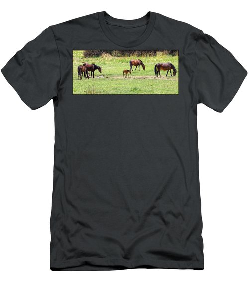 Roaming Freely Men's T-Shirt (Athletic Fit)