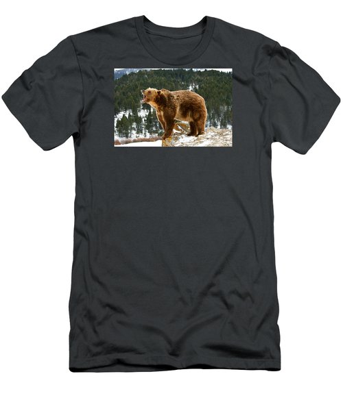 Roaring Grizzly On Rock Men's T-Shirt (Athletic Fit)