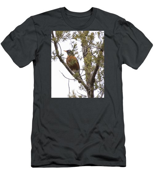 Robin On The Lookout Men's T-Shirt (Athletic Fit)