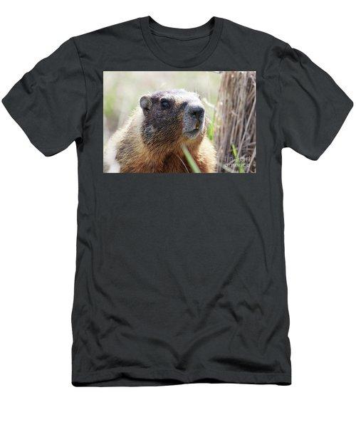 Rock Chuck Men's T-Shirt (Athletic Fit)
