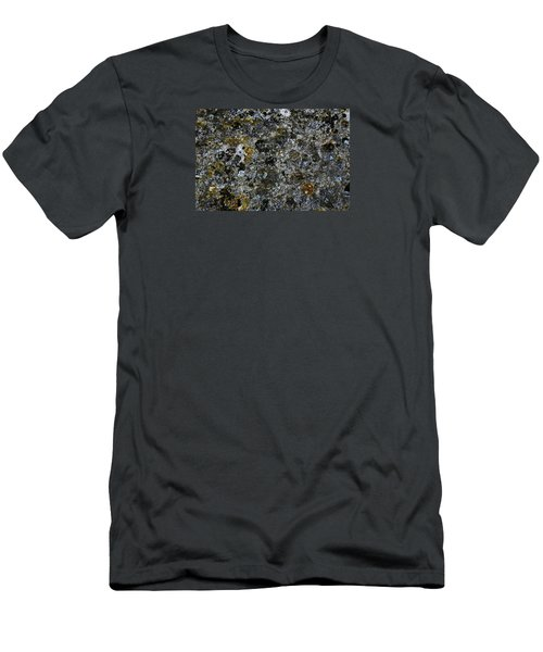 Rock Lichen Surface Men's T-Shirt (Slim Fit) by Nareeta Martin