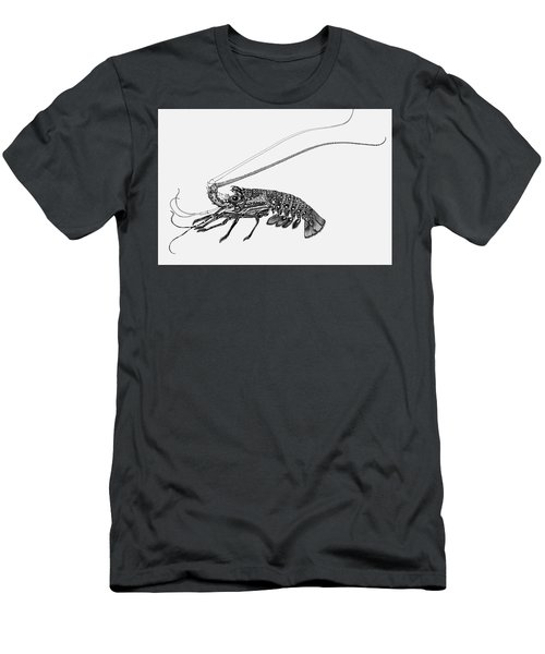 Rock Lobster Men's T-Shirt (Athletic Fit)