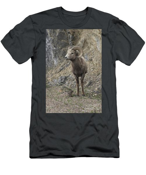 Rockies Big Horn Men's T-Shirt (Athletic Fit)