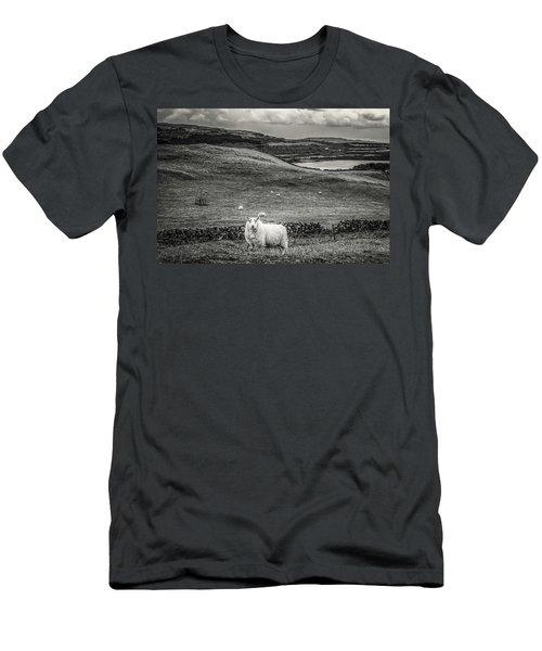 Room To Roam Men's T-Shirt (Athletic Fit)