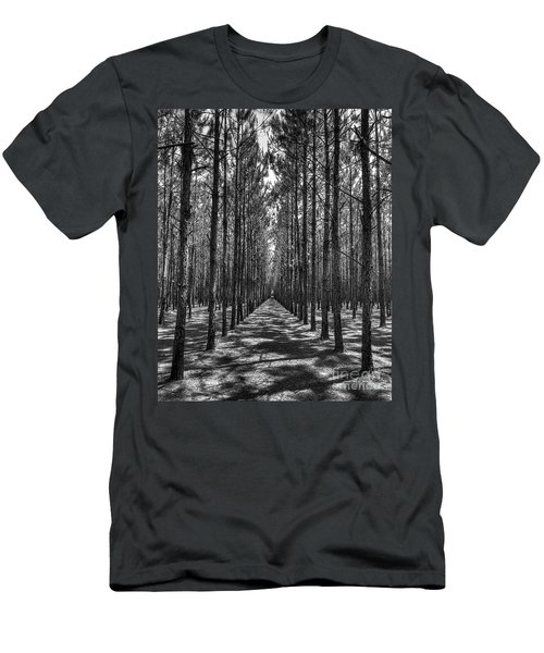 Rows Of Pines Vertical Men's T-Shirt (Athletic Fit)