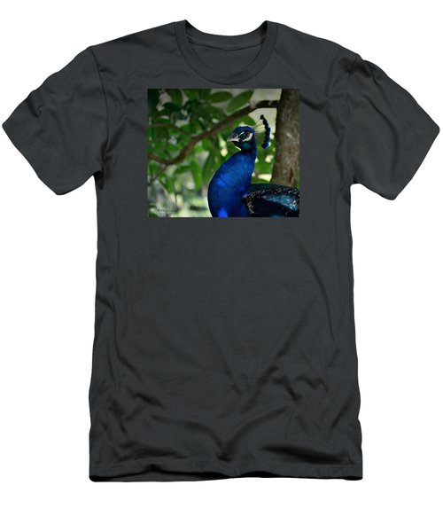 Royal Blue Men's T-Shirt (Athletic Fit)