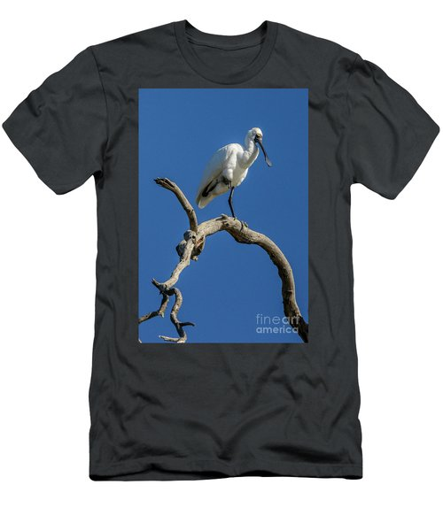 Royal Spoonbill 01 Men's T-Shirt (Athletic Fit)