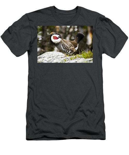 Ruffled Grouse II Men's T-Shirt (Athletic Fit)