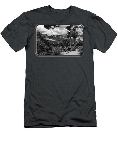 Sabino Canyon No5 Men's T-Shirt (Athletic Fit)