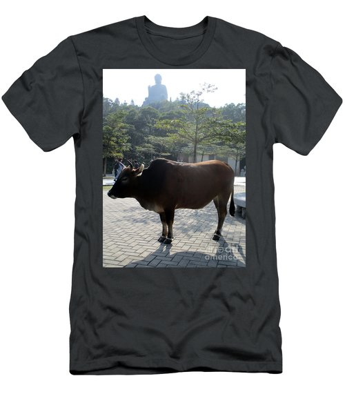 Men's T-Shirt (Slim Fit) featuring the photograph Sacred Cow 3 by Randall Weidner
