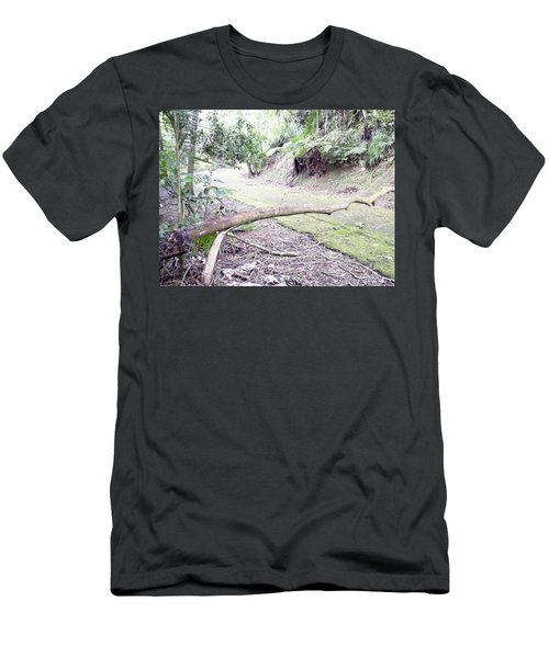 San Andres Echologycal Path At Guilarte's Forest Men's T-Shirt (Athletic Fit)