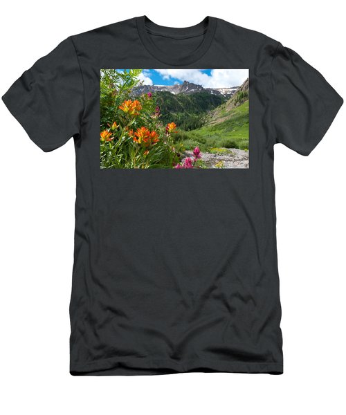 San Juans Indian Paintbrush Landscape Men's T-Shirt (Athletic Fit)
