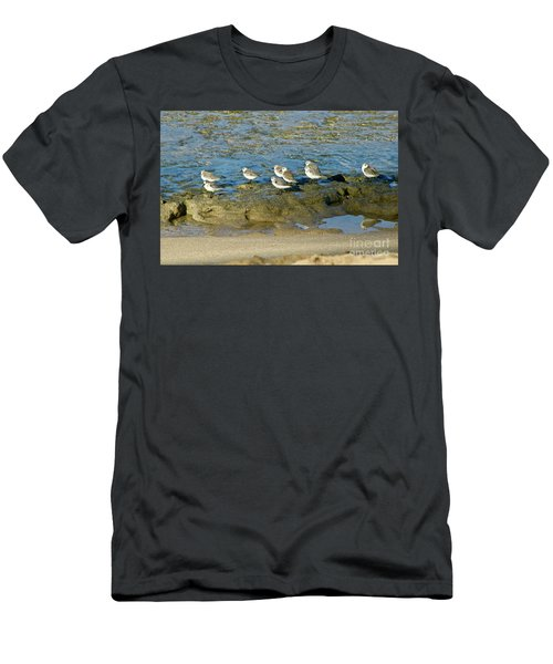 Sanderling Gather Men's T-Shirt (Athletic Fit)