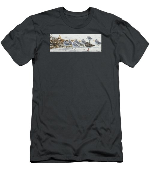 Sanderlings And Ruddy Men's T-Shirt (Athletic Fit)