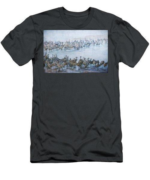 Sandhill Cranes Texture Men's T-Shirt (Athletic Fit)