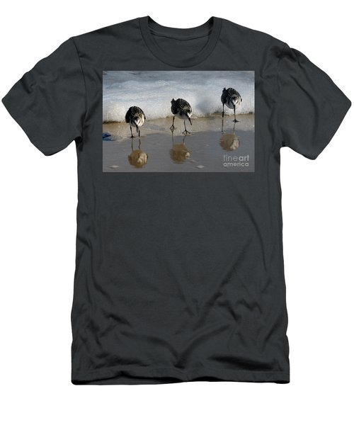Sandpipers Feeding Men's T-Shirt (Athletic Fit)