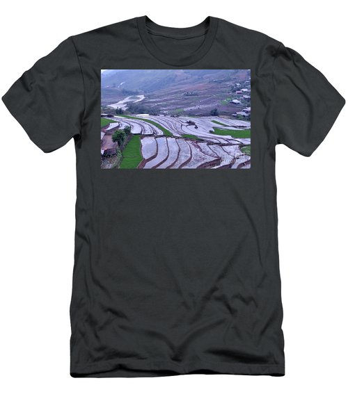 Sapa Rice Paddies Men's T-Shirt (Athletic Fit)