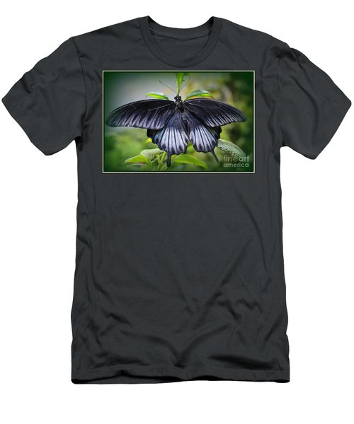 Sapphire Blue Swallowtail Butterfly Men's T-Shirt (Athletic Fit)