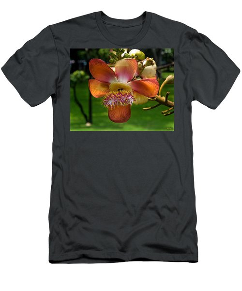 Sara Tree Flower Dthb104 Men's T-Shirt (Athletic Fit)