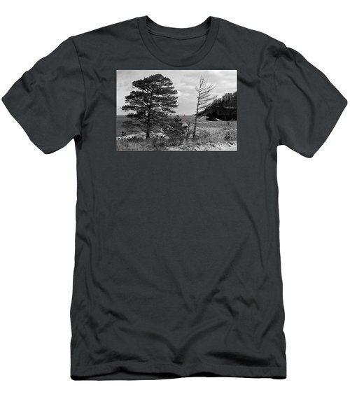 Saugatuck State Park In November Men's T-Shirt (Athletic Fit)