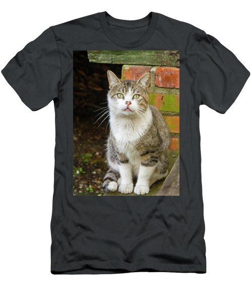 Scar Nose Men's T-Shirt (Athletic Fit)