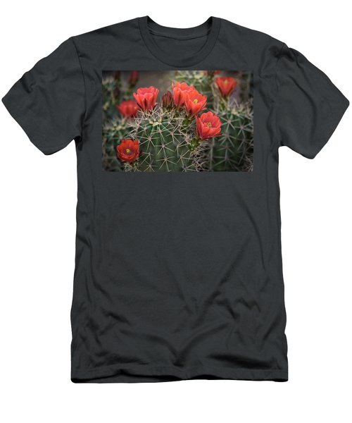 Men's T-Shirt (Slim Fit) featuring the photograph Scarlet Hedgehog Cactus  by Saija Lehtonen