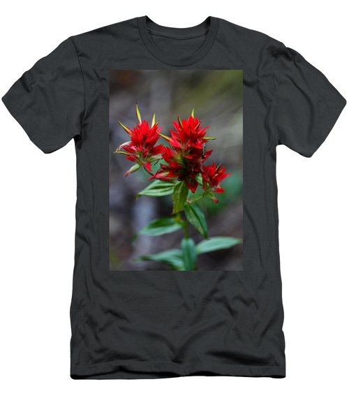 Scarlet Red Indian Paintbrush Men's T-Shirt (Athletic Fit)