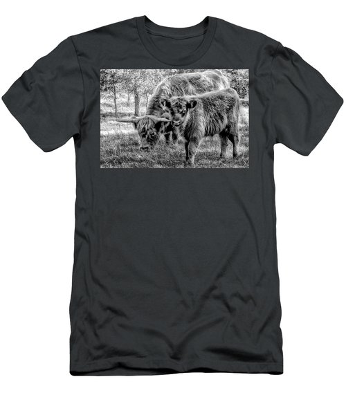 Scottish Highland Cattle Black And White Men's T-Shirt (Slim Fit) by Constantine Gregory