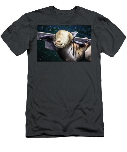 California Sea Lion - Scratch The Itch Men's T-Shirt (Athletic Fit)