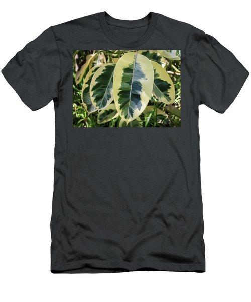 Scribble Scrabble Men's T-Shirt (Athletic Fit)