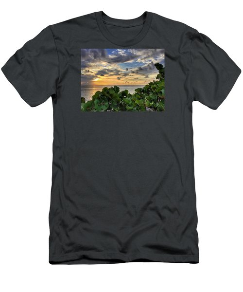 Sea Grape Sunrise Men's T-Shirt (Slim Fit)