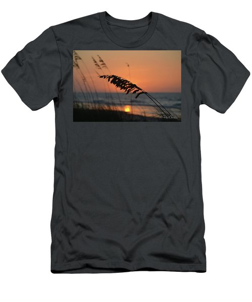 Sea Oats At Sunrise Men's T-Shirt (Slim Fit) by Gordon Mooneyhan
