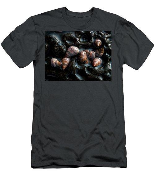 Sea Snails Men's T-Shirt (Athletic Fit)
