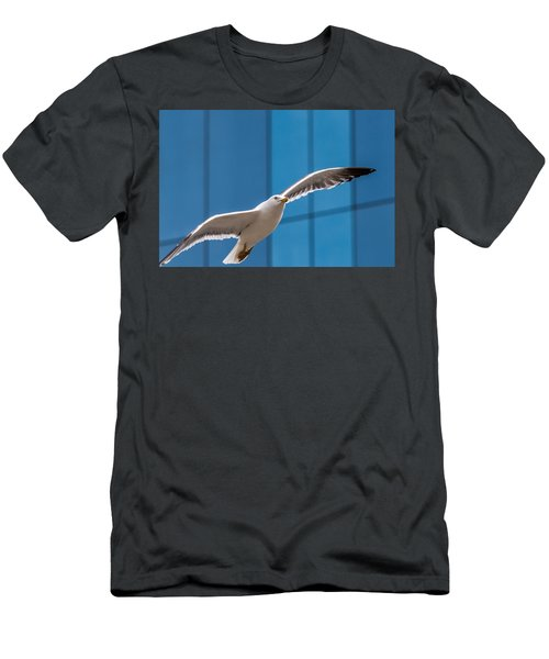 Seabird Flying On The Glass Building Background Men's T-Shirt (Athletic Fit)