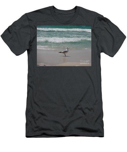 Seagull Men's T-Shirt (Slim Fit) by Megan Cohen