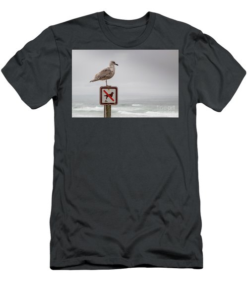 Seagull Standing On Sign And Looking At The Ocean Men's T-Shirt (Athletic Fit)