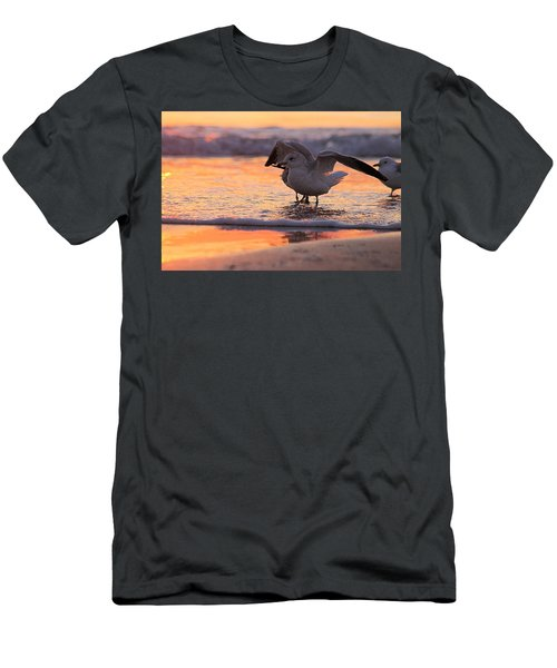 Seagull Stretch At Sunrise Men's T-Shirt (Athletic Fit)