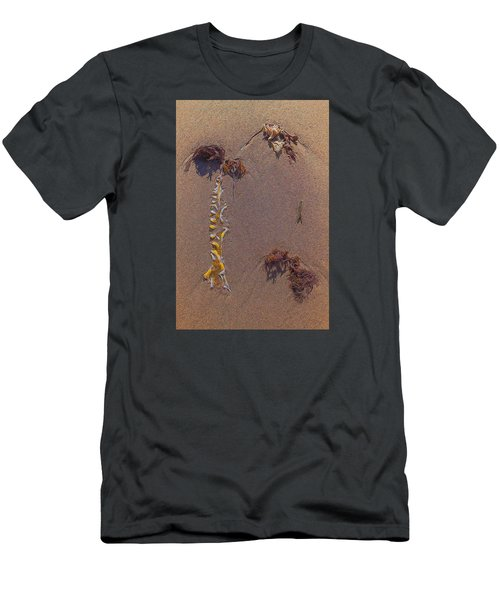 Seaweed On Clayhead Beach Men's T-Shirt (Slim Fit) by Todd Breitling