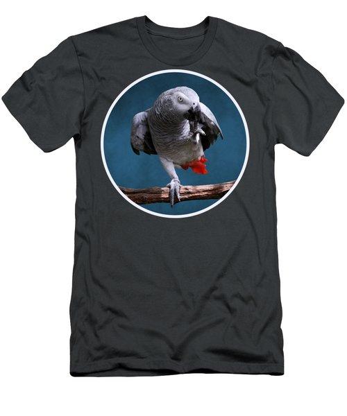 Secretive Gray Parrot Men's T-Shirt (Athletic Fit)