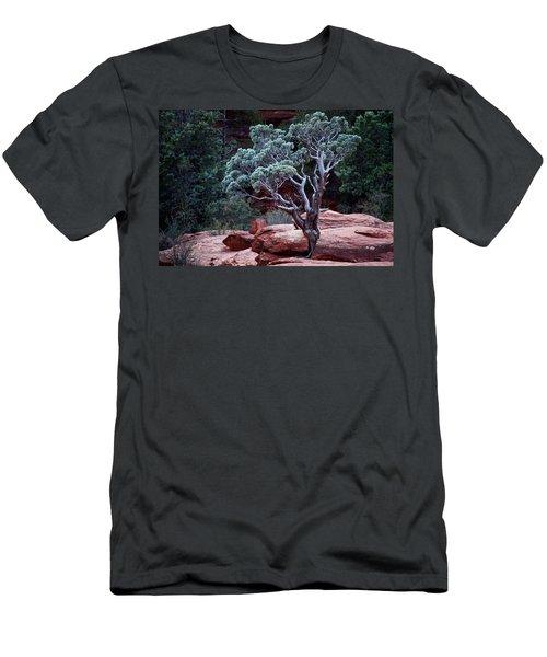 Sedona Tree #3 Men's T-Shirt (Athletic Fit)
