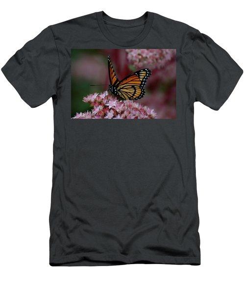 Sedum Butterfly Men's T-Shirt (Athletic Fit)