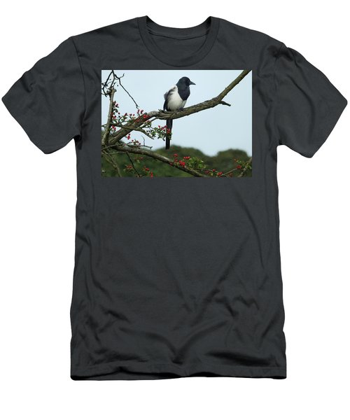 September Magpie Men's T-Shirt (Slim Fit) by Philip Openshaw