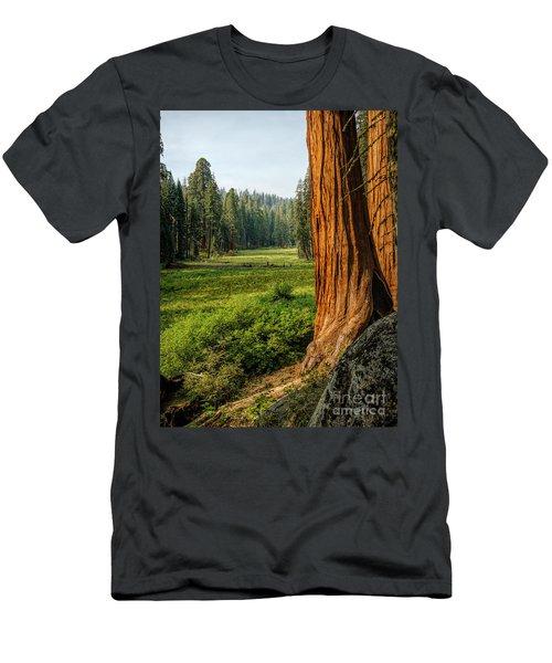 Sequoia Np Crescent Meadows Men's T-Shirt (Athletic Fit)