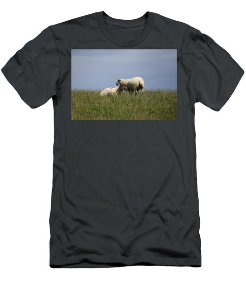 Sheep 4221 Men's T-Shirt (Athletic Fit)