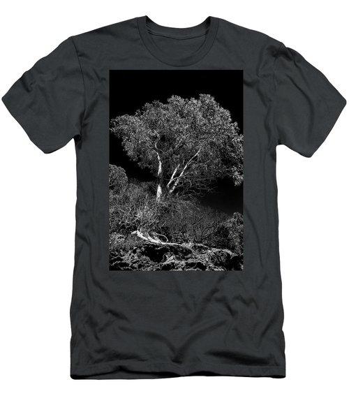 Shoreline Tree Men's T-Shirt (Athletic Fit)
