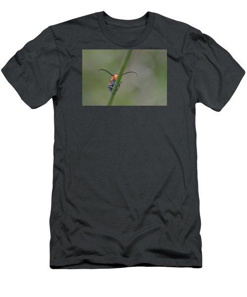 Shy Beetle Men's T-Shirt (Slim Fit) by Janet Rockburn
